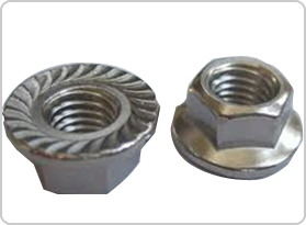 Flange Nut Manufacturer in Mumbai